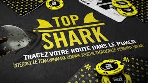 coach-poker-adrien-guyon-topshark